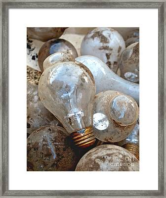 Bulb Picking Framed Print by Gwyn Newcombe