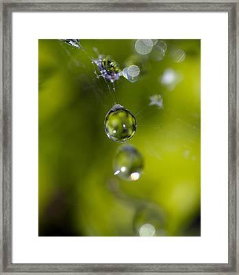Bulb Framed Print by Rebecca Cozart