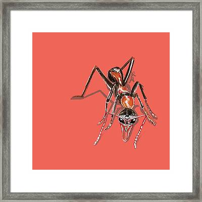 Framed Print featuring the painting Bull Ant by Jude Labuszewski