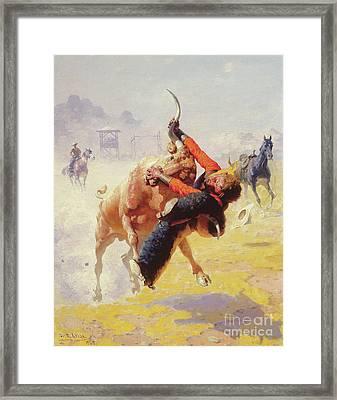 Bull Dodging Framed Print