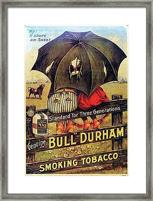 Bull Durham Smoking Tobacco Framed Print