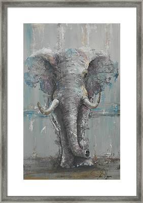 Bull Elephant Framed Print