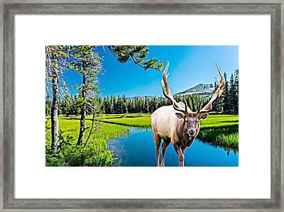 Bull Elk By The Lake Framed Print
