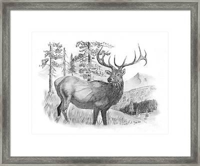 Bull Elk Framed Print by Russ  Smith