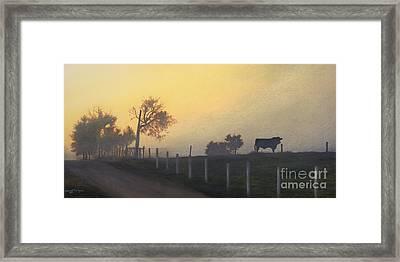 Bull In The Fog Framed Print