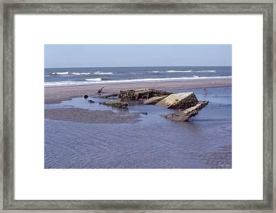 Bull Island 1 Framed Print