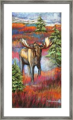 Bull Moose In Fall Framed Print by Tracey Hunnewell