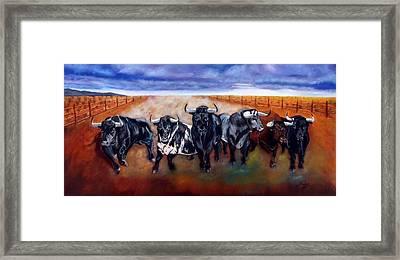 Bull Stampede Framed Print by Manuel Sanchez