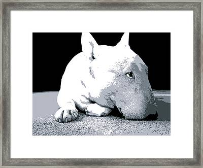 Bull Terrier White On Black Framed Print