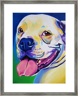 American Bulldog - Luke Framed Print by Alicia VanNoy Call