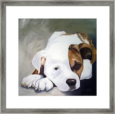 Bulldog Framed Print by Dick Larsen