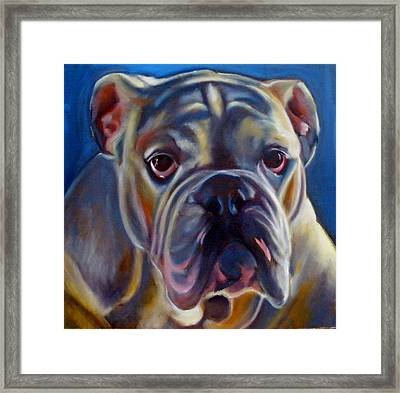 Bulldog Expression 2 Framed Print by Kaytee Esser