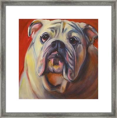 Bulldog Expression One Framed Print by Kaytee Esser