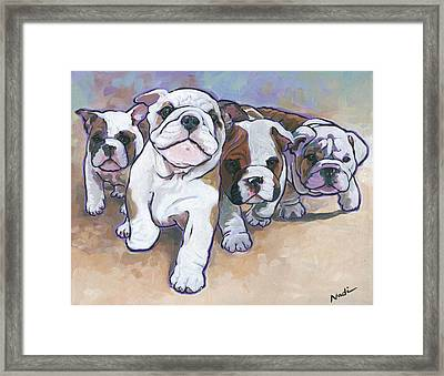 Bulldog Puppies Framed Print by Nadi Spencer