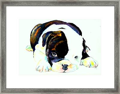 Bulldog Puppy Framed Print
