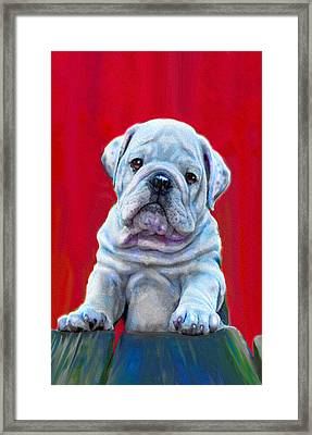 Framed Print featuring the digital art Bulldog Puppy On Red by Jane Schnetlage