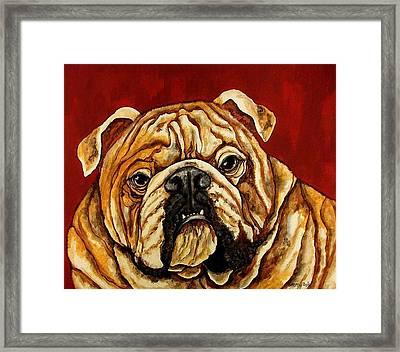 Bulldog Framed Print by Sherry Dole