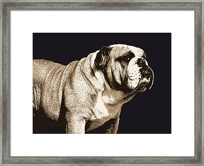 Bulldog Spirit Framed Print by Michael Tompsett
