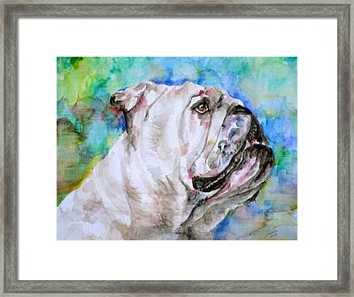 Framed Print featuring the painting Bulldog - Watercolor Portrait.4 by Fabrizio Cassetta