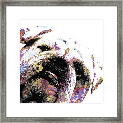 Bulldog - White Framed Print by Stacey Chiew