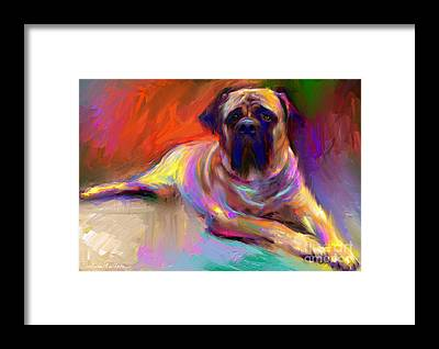 Mastiff Framed Prints