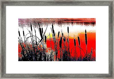Bullrushes Against The Sunset Framed Print