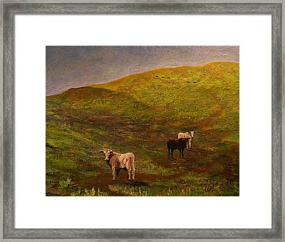 Bulls On Figueroa Mt. Framed Print by Trish Campbell
