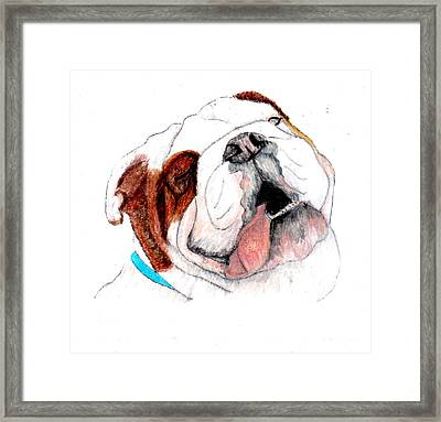 Framed Print featuring the drawing Bully For You by Barbara Giordano
