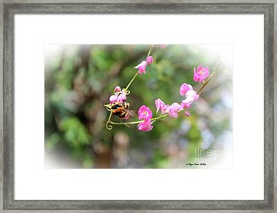 Framed Print featuring the photograph Bumble Bee2 by Megan Dirsa-DuBois