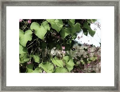 Framed Print featuring the photograph Bumble Bum by Megan Dirsa-DuBois