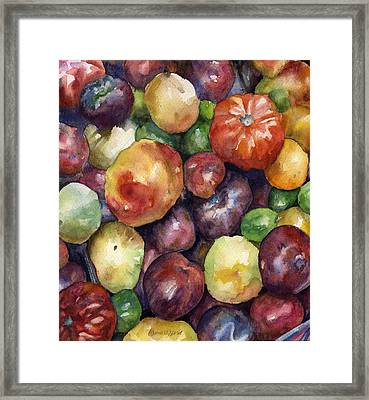 Bumper Crop Of Heirlooms Framed Print by Anne Gifford