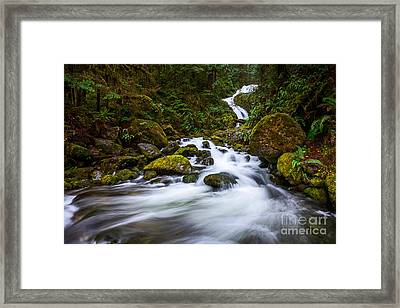 Bunch Creek Falls In The Olympic National Park Of Wash Framed Print