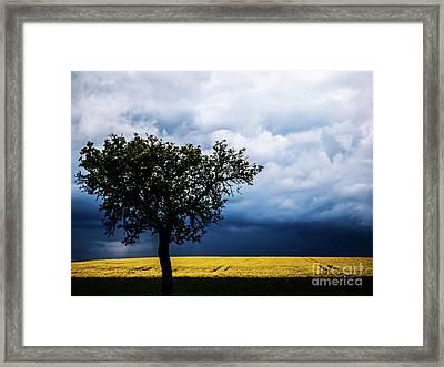 Bliesgau_15 Framed Print