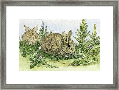 Bunnies Framed Print