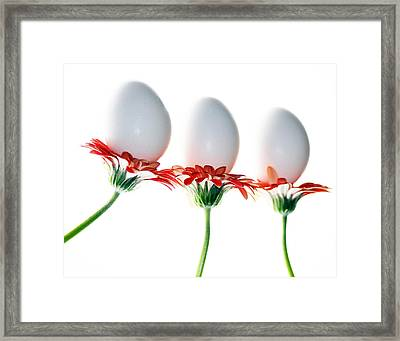 Bunny Bouquet Framed Print by Rebecca Cozart