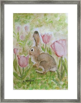 Bunny In The Tulips Framed Print