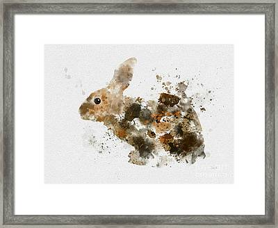 Bunny Rabbit Framed Print by Rebecca Jenkins