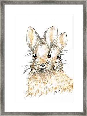 Bunny Rabbits  Framed Print by Teresa White