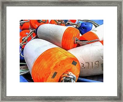 3719 Framed Print
