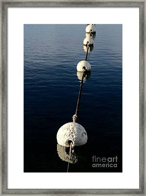 Framed Print featuring the photograph Buoy Descending by Stephen Mitchell