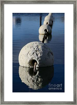 Framed Print featuring the photograph Buoy In Detail by Stephen Mitchell