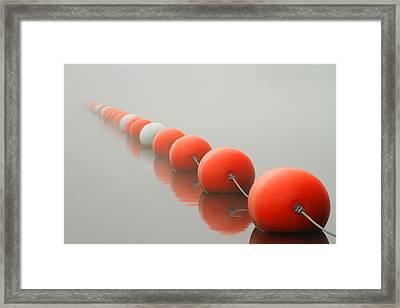 Buoy Line Framed Print by Karol Livote