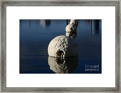 Framed Print featuring the photograph Buoy Upfront by Stephen Mitchell