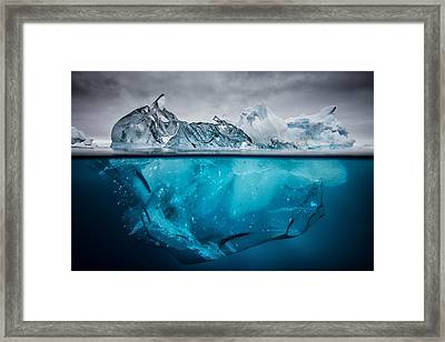 Buoyancy Framed Print by Justin Hofman