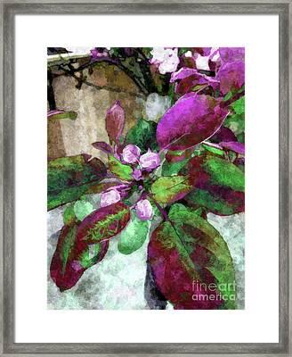 Buoyancy Of Nature Framed Print by Tlynn Brentnall