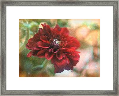 Burgundy Autumn Framed Print by Kathy Bucari