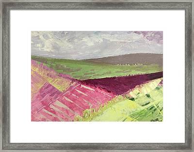 Burgundy Fields Framed Print