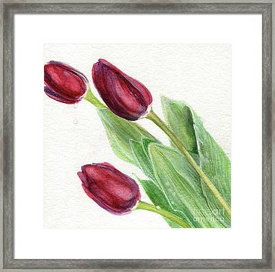 Burgundy Tulips Framed Print