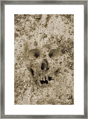 Buried Skull Framed Print by Dave Gordon