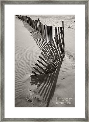 Buried Framed Print by Timothy Johnson